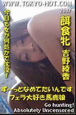 東京熱 吉野綾香(Ayaka Yoshino)